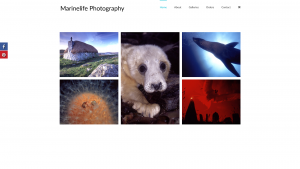 Marinelife Photography Homepage - design by Collective.Digital
