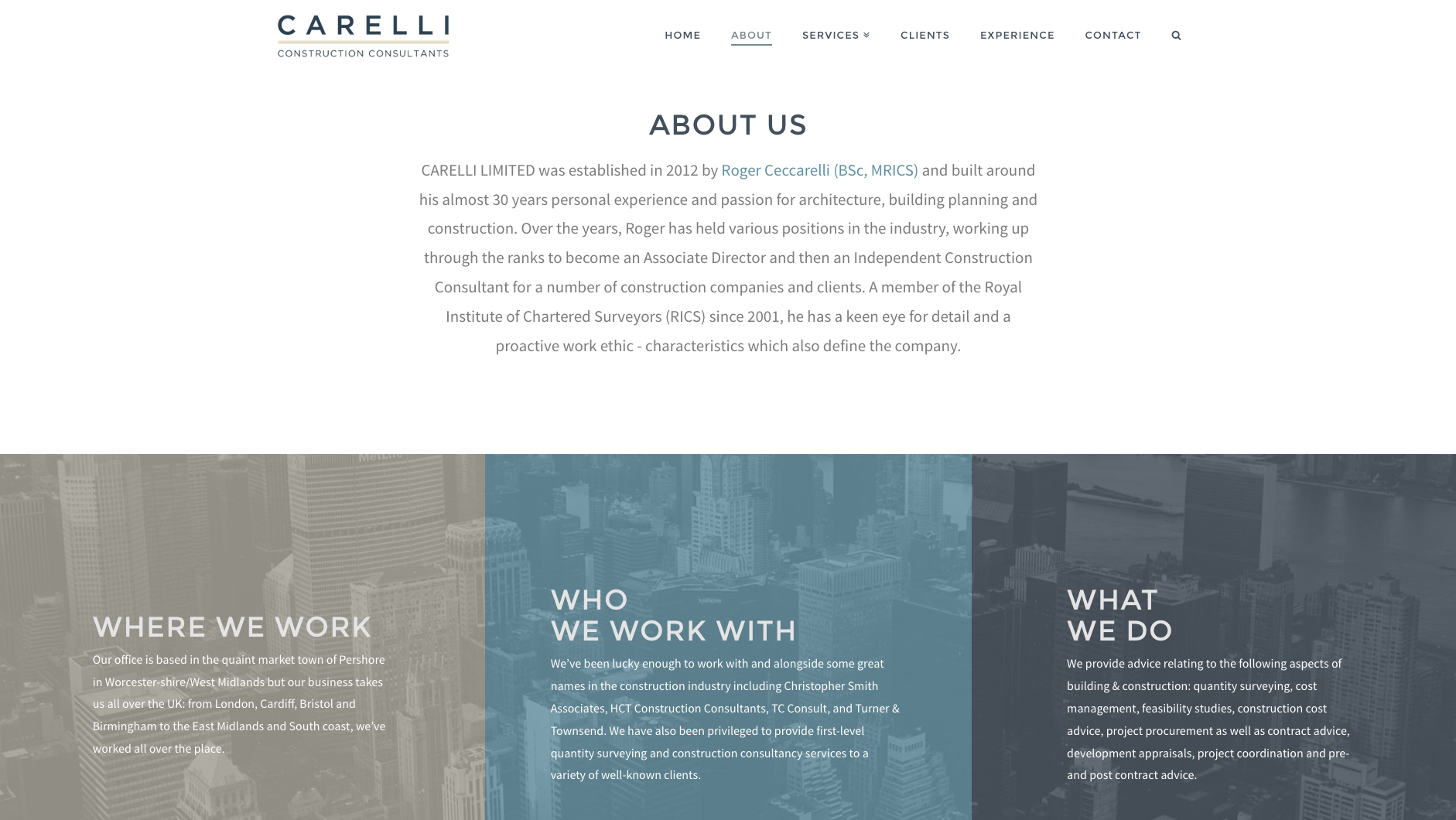 About Us page for Carelli website design