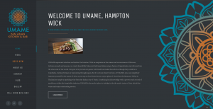 Home page from UMAME website design